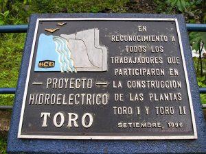 plaquete toro 1
