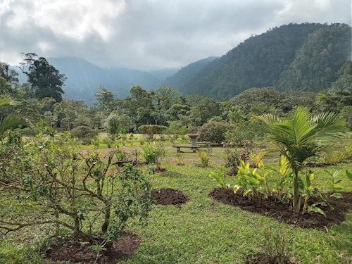 Garden view Catarata Del Toro